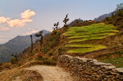 Villagers have built terraces into the steep hillsides. Farming here is challenging, but it is how people have survived in villages like this for centuries.