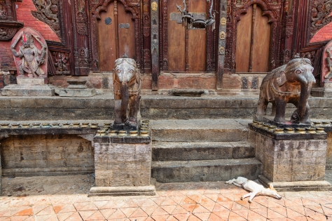©Luke Mislinski - Changu Narayan, the oldest temple in Kathmandu Valley, hosts several good natured dogs. They only seem to be peacefully quiet during the day...